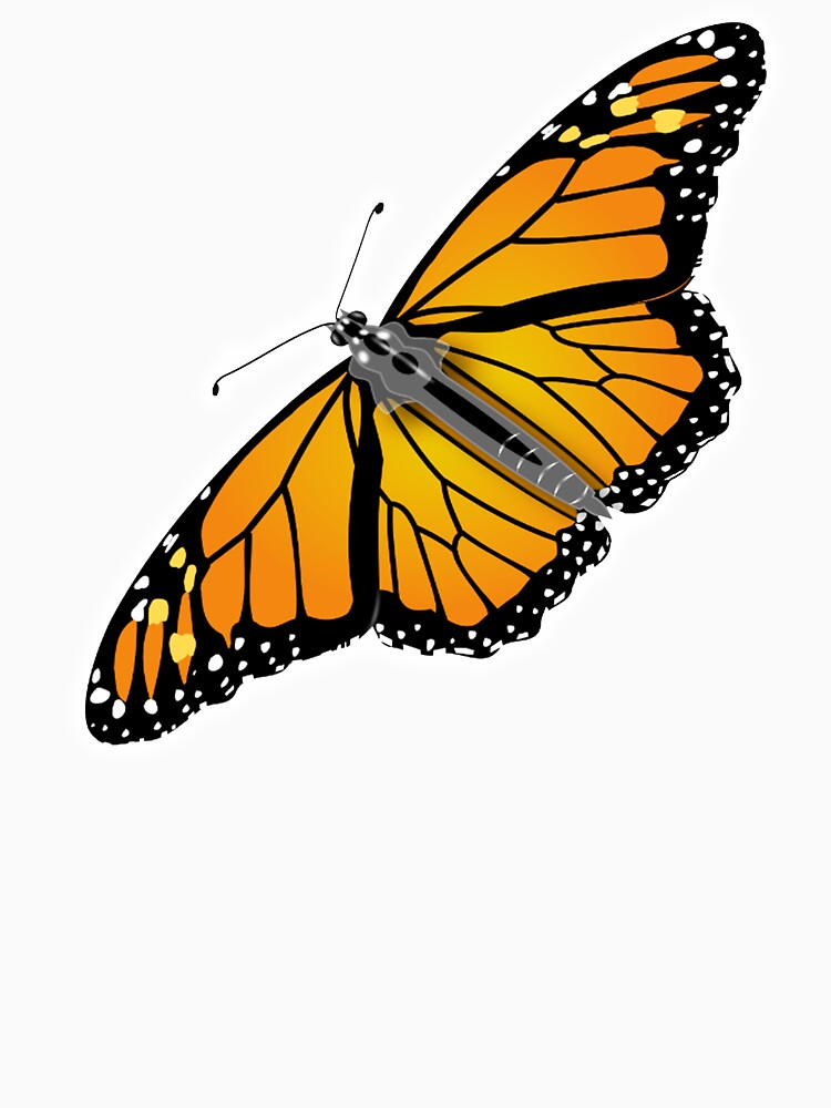 BUTTERFLY, Monarch, Danaus plexippus, Nymphalidae by TOMSREDBUBBLE