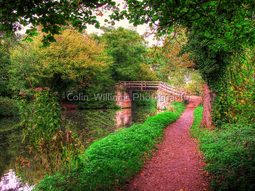 Dod`s Bridge Revisited - HDR by Colin  Williams Photography