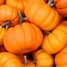 Pumpkins 4 Sale by Nancy Barrett