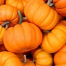 Pumpkins 4 Sale by Nancy Barrett