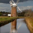Stormy Horsey Mill! by Carole Stevens