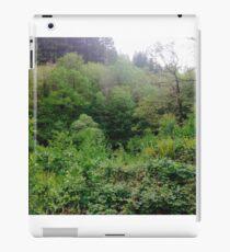 Tree scene iPad Case/Skin