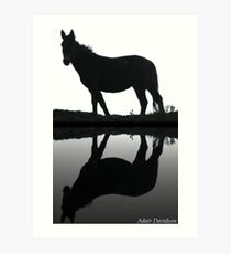 Scab Land Reflection Art Print