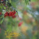 Rowanberry dream  Anno Domini 2018. ©Dr.Andrzej Goszcz. by © Andrzej Goszcz,M.D. Ph.D