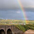 Ireland rainbow by Monica Di Carlo