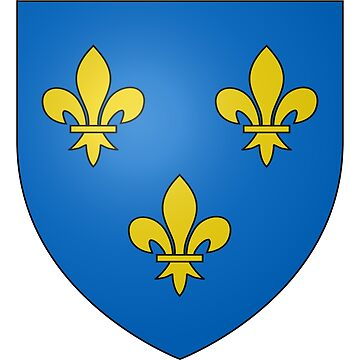 French France Coat of Arms 14857 Blason ville fr Réalville Tarn et Garonne by wetdryvac