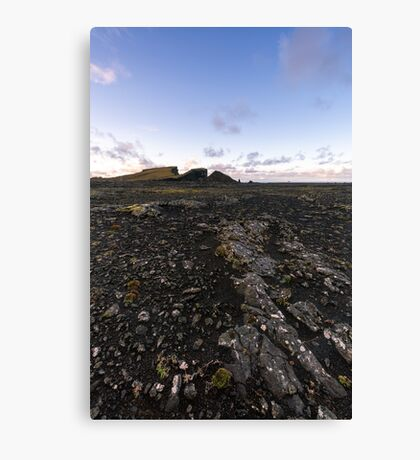Icelandic Land Canvas Print
