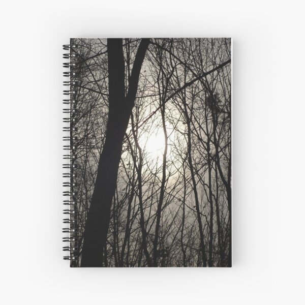 Trees in Shadow Spiral Notebook