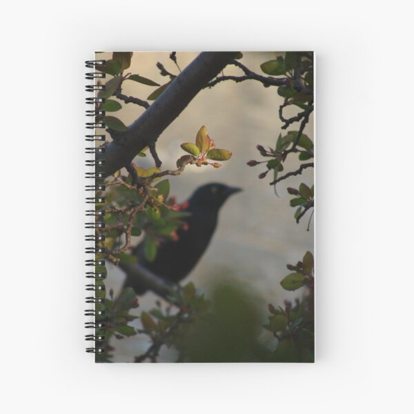Black Bird and Rose Branches Spiral Notebook