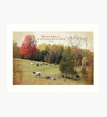 Peaceful Cows Art Print