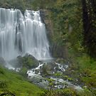 Marokopa falls, Waikato, New Zealand by Paul Mercer