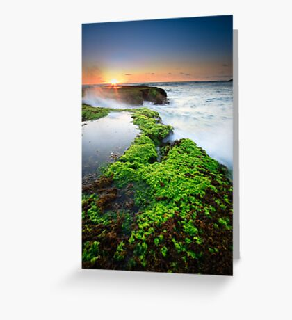 Living On The Edge Greeting Card