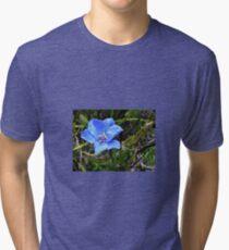 Aristea africana Tri-blend T-Shirt