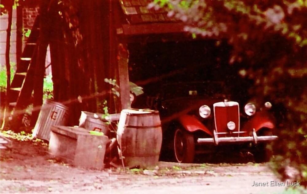 Old Red Car by Janet Ellen Lusk