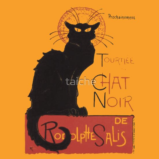 TShirtGifter presents: Chat Noir - Steinlein