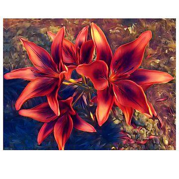 Flower by ShyneR