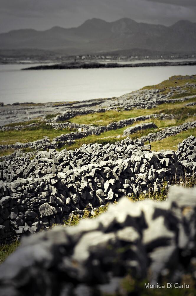 Aran walls, Inishmore, Ireland by Monica Di Carlo