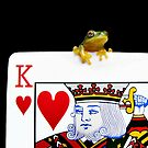 King of Hearts by JulieM