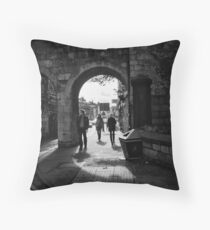 Posing for history Throw Pillow