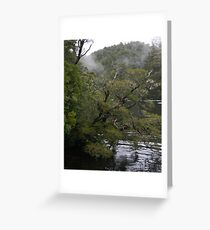 Huon Pine Greeting Card
