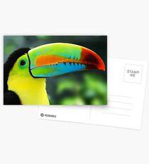 TUKAN Postcards