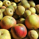 Autumn Apple Harvest by WesternExposure