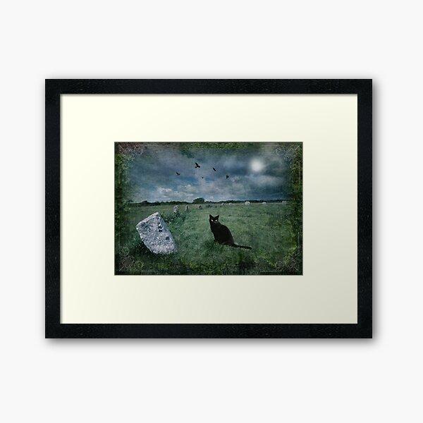 Cornish Black Cat Framed Art Print