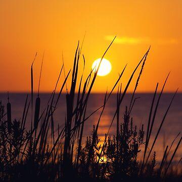 Mississippi Gulf Coast Sunset by Jonicool