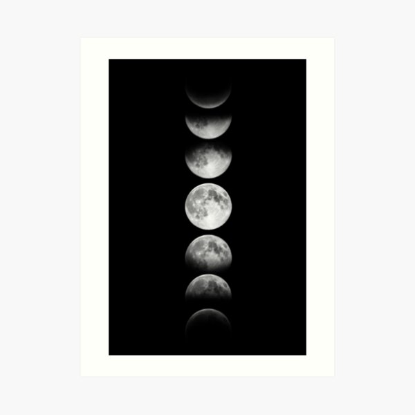 Phases of the Moon - White Art Print