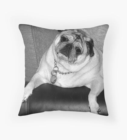 """Did you say """"treat""""? Throw Pillow"""