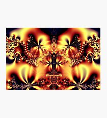 The Butterfly Queen Photographic Print