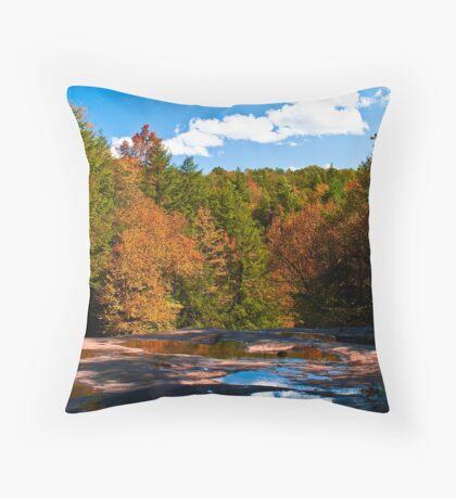 From Atop Muddy Creek Falls Throw Pillow