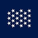 21-Star American Flag, Illinois, Design B, Evry Heart Beats True by EvryHeart