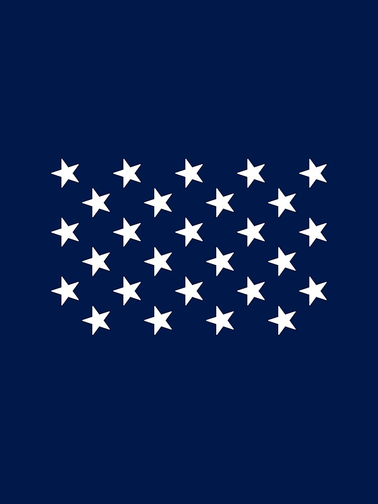 27-Star American Flag, Florida, Evry Heart Beats True by EvryHeart