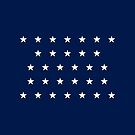 31-Star American Flag, California, Evry Heart Beats True by EvryHeart