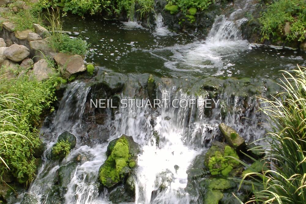 WATERFALL by NEIL STUART COFFEY