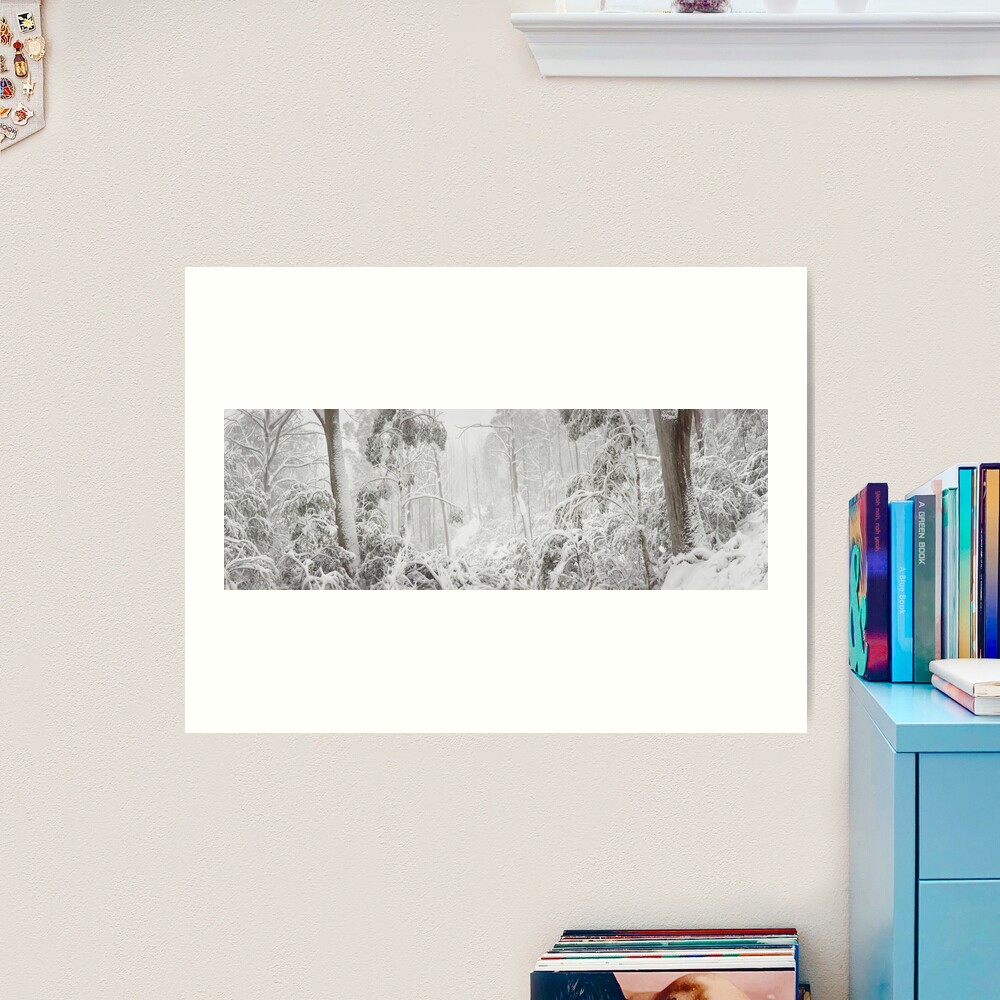 Snowy Trees, Alpine National Park, Victoria, Australia Art Print