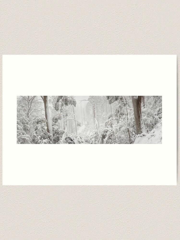 Alternate view of Snowy Trees, Alpine National Park, Victoria, Australia Art Print
