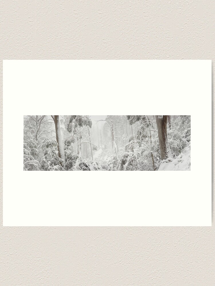 Alternate view of Snowy Trees, Alpine National Park, Victoria, Australia Art Print