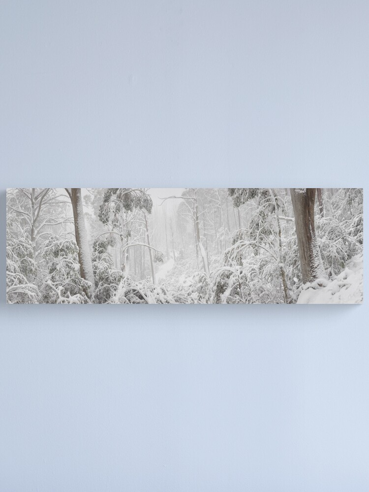 Alternate view of Snowy Trees, Alpine National Park, Victoria, Australia Canvas Print