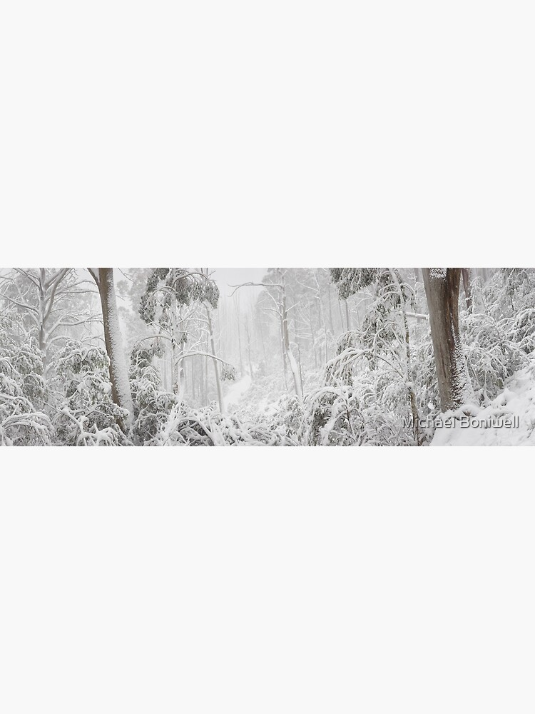 Snowy Trees, Alpine National Park, Victoria, Australia by Chockstone