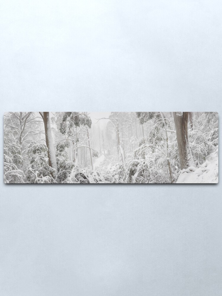 Alternate view of Snowy Trees, Alpine National Park, Victoria, Australia Metal Print