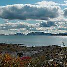 """'Mt. Desert Island from McNeil Point"""" by Scott Bricker"""