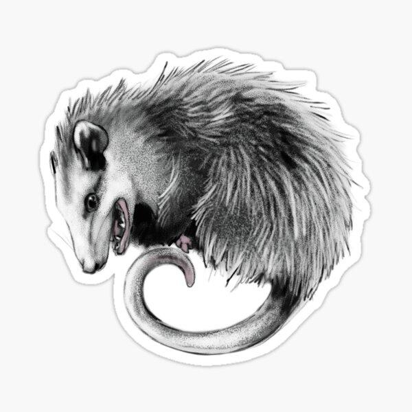 Virginia Opossum Sticker
