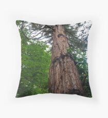 Pinus Sylvestris Throw Pillow