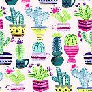 Millennial Pink Cacti  by TigaTiga