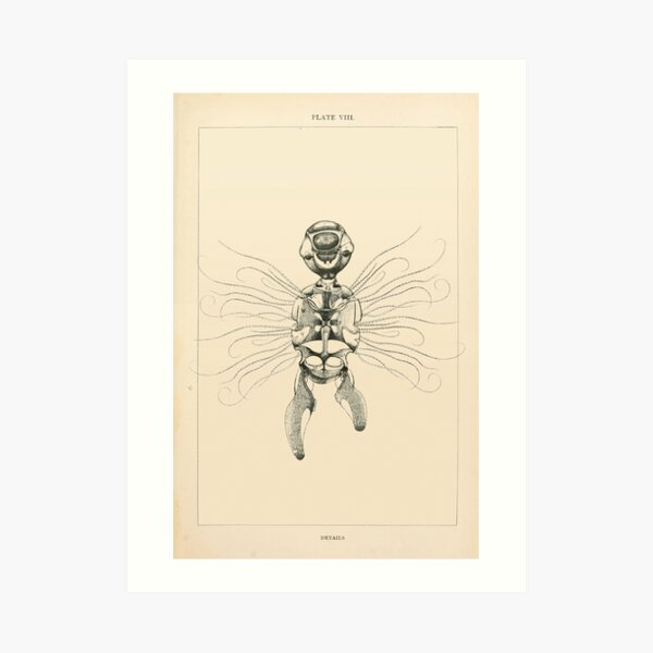 Retro Alien: Sumsum Art Print