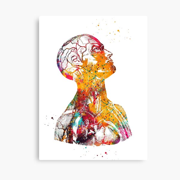 Head And Torso Canvas Print