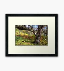 Gnarly Framed Print