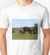 Mama Cow and Calf in Texas Pasture T-Shirt